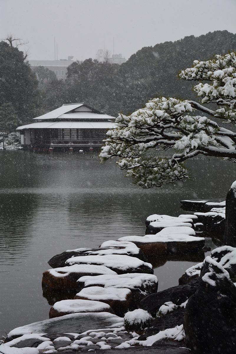 Snowy Kiyosumi Gardens