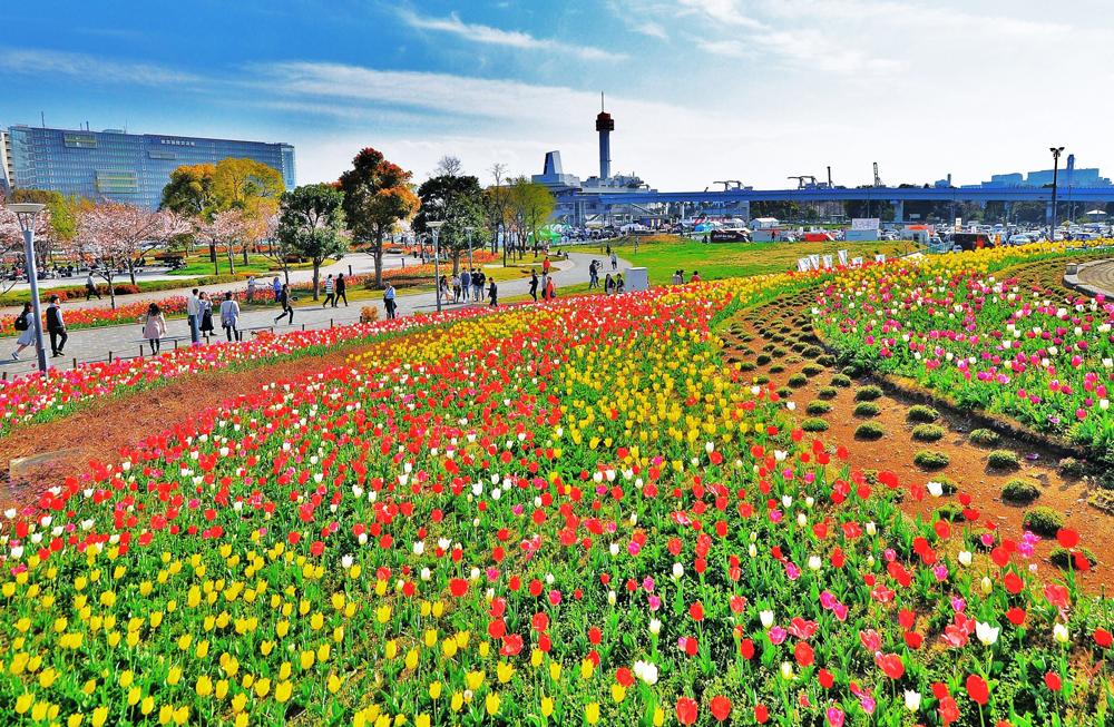 We color spring