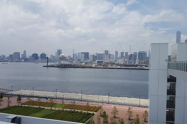 来自屋顶绿化广场的风景