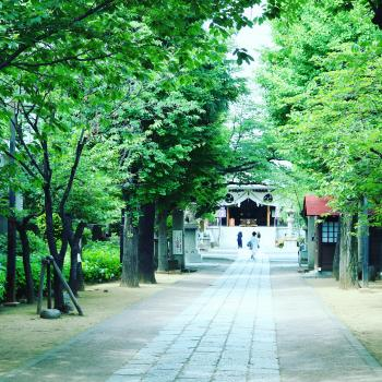 Kameido Katori jinja Shrine