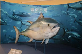 Art object of Toyosu Market tuna