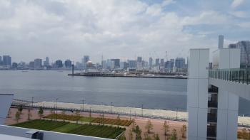 Scenery from Toyosu Market roof tree planting open space