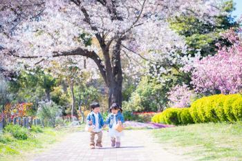 Kiba Park