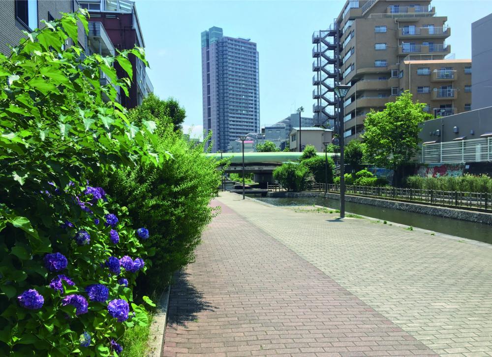 古石场川亲水公园