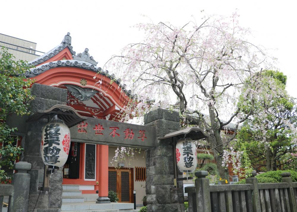 Syusse Fudoson Temple(Chosen-in Fudoji Temple)