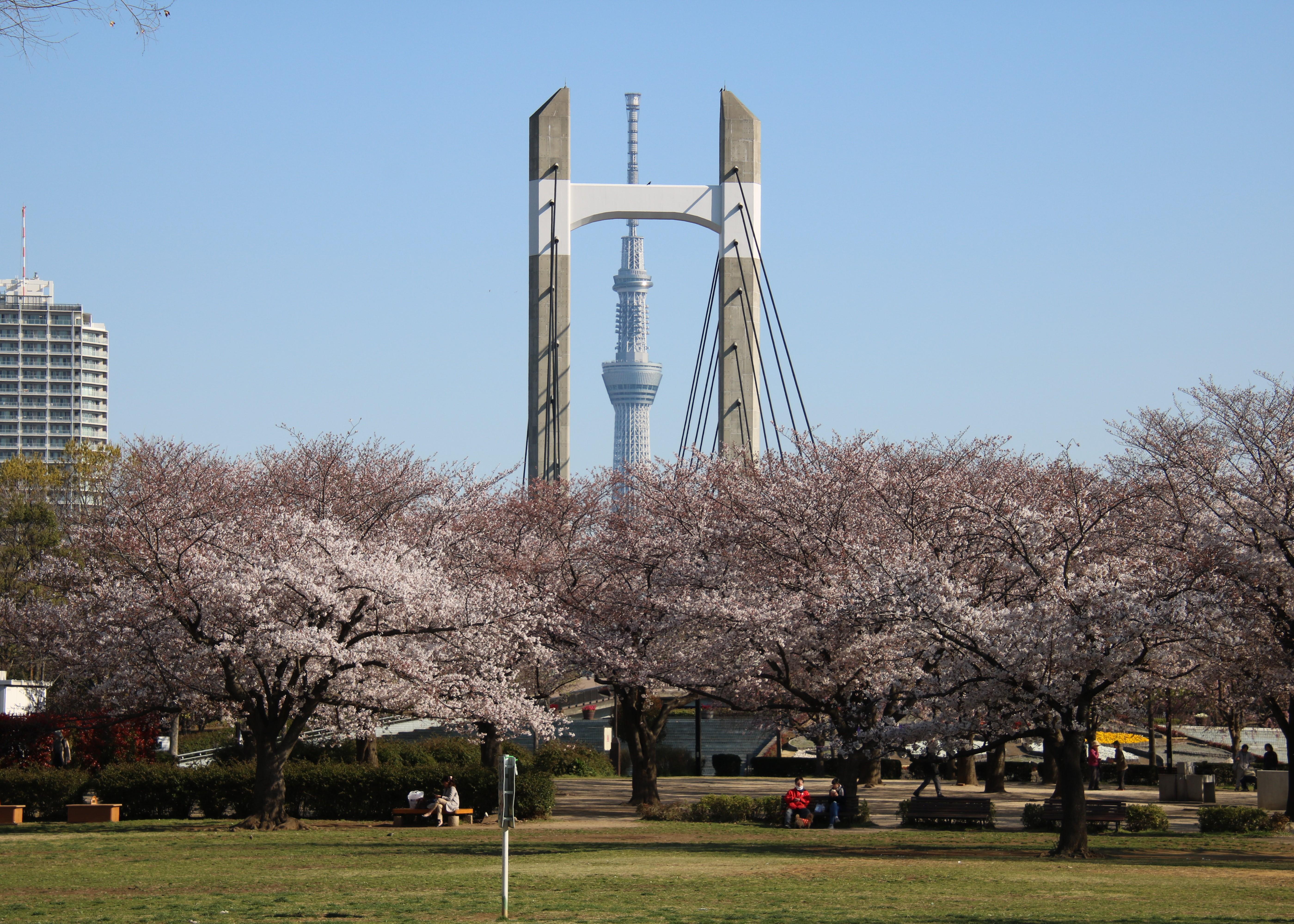 Fukagawa Area — Kiba Station